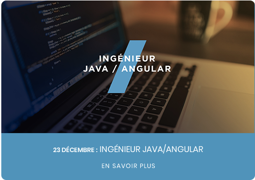 Ingénieur d'Etudes JAVA/JEE/ANGULAR  F/H